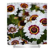 The White Field Shower Curtain