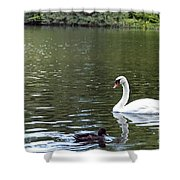 The White Swan Shower Curtain