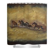 The Wild And Free Ones Shower Curtain