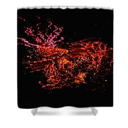 The Will O The Wisps Shower Curtain