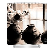 The Window Vases Shower Curtain