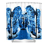 The Wings Of Fallen Angels Shower Curtain