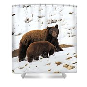 The Winter Guide Shower Curtain