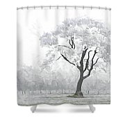 The Winter's Embrace Shower Curtain