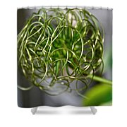 The World Of Clematis  Shower Curtain