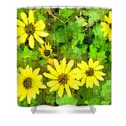 The Yellow Daisies  Shower Curtain