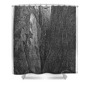 The Yellowstone Shower Curtain