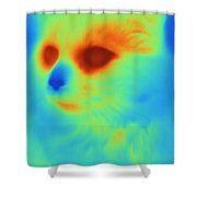 Thermogram Of A Cat Shower Curtain