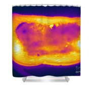 Thermogram Of A Hot Toast Shower Curtain