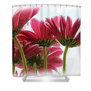 They Might Be Giants Shower Curtain