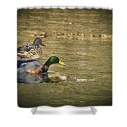 Thin Ice Wet Duck Shower Curtain