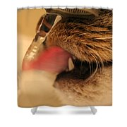Thirsty Cat Shower Curtain