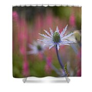 Thistle Dream Grove Shower Curtain