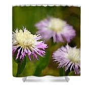 Thistle Illusion Shower Curtain
