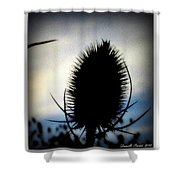 Thistle In The Sky Shower Curtain