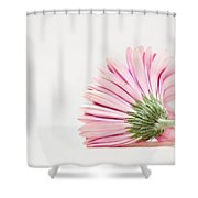 Thoughts So Tender Shower Curtain