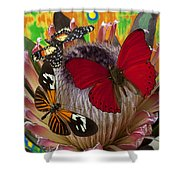 Three Butterflies On Protea Shower Curtain