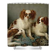 Three Cavalier King Charles Spaniels On A Rug Shower Curtain