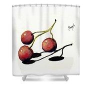 Three Cherries Shower Curtain