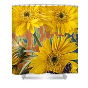 Three Daisy's And Butterfly Shower Curtain