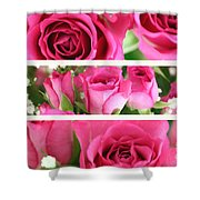 Three Pink Roses Landscape Shower Curtain