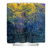 Three Thin Autumnal Trees In Front Of Shower Curtain