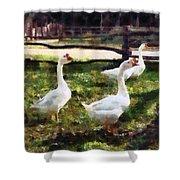 Three White Geese Shower Curtain