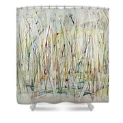 Through A Glass Brightly Shower Curtain