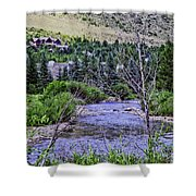 Through My Eyes Shower Curtain by Madeline Ellis