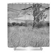 Through The Tall Grasses Shower Curtain