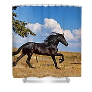 Thunderheads Shower Curtain