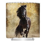 Thundering Stallion Shower Curtain