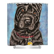 Tia Shar Pei Dog Painting Shower Curtain