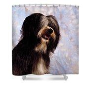 Tibetan Terrier Shower Curtain