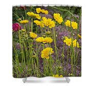 Tick Seed 2229 Shower Curtain