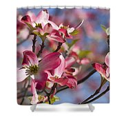 Tickled Pink Dogwood Shower Curtain