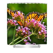 Tiffany Wings And Flowers Shower Curtain