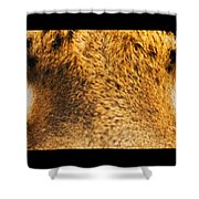 Tiger Eyes Shower Curtain