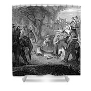 Tiger Hunt, 19th Century Shower Curtain