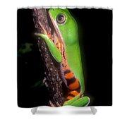 Tiger Leg Monkey Frog Shower Curtain