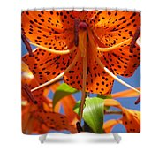 Tiger Lily Close Up Shower Curtain