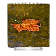 Time Floating Away Shower Curtain