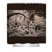 Time Forgotten Shower Curtain
