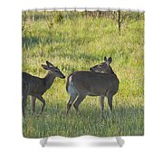 Time To Be On Your Own Son 5981 Shower Curtain