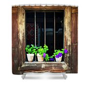 Time Worn Window With Bright Flowers Shower Curtain