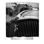 Timmis-ford V8 Greyhound Hood Ornament Shower Curtain