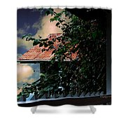 Tin Roof And Vines Shower Curtain