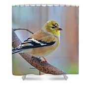 Tiny Beauty Shower Curtain