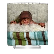 Tiny One Shower Curtain