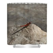 Tipping Point Shower Curtain